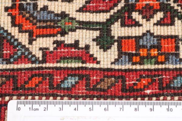 323647 Choltog Size 154 X 100 Cm 5 600x400